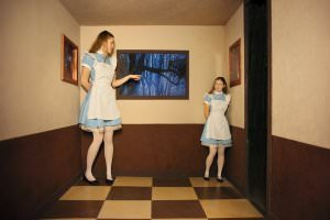 Escape room ALICE (camera di Ames)